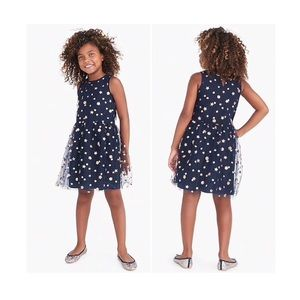 J.crew Crewcuts Toddler Girl Tulle Lace Star Dress